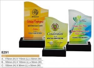 8291-color-crystal-award